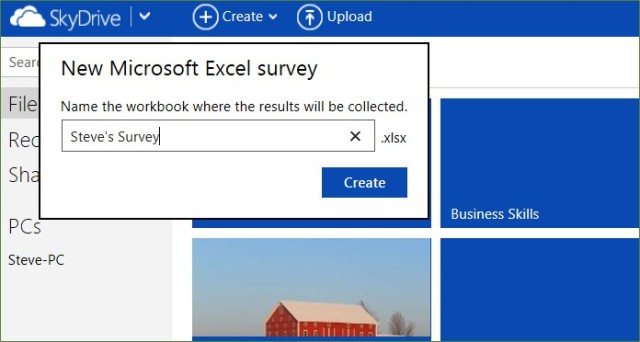 Name the Excel survey
